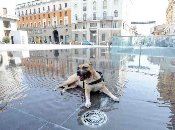 Ferragosto 2016 a Napoli: musei statali aperti in via straordinaria